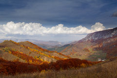 Red Forests. Fall on Bedeleu Mountains, Alba county, Romania, Monastery Stock Photos
