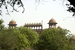 Red Fort Behind Trees