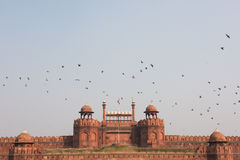 Red Fort in Delhi Royalty Free Stock Photography