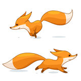 Red fox character. Cartoon red fox character, vector illustration, isolated on white background Royalty Free Stock Photography