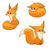 Red fox character. Cartoon red fox character, vector illustration, isolated on white background Royalty Free Stock Image