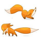 Red fox character. Cartoon red fox character, vector illustration, isolated on white background Stock Images