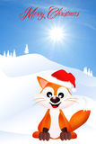 Red fox at Christmas Royalty Free Stock Photo
