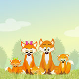 Red fox family in the forest Stock Image