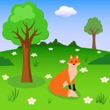 Red fox on the forest meadow vector illustration