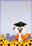 Red fox graduate Royalty Free Stock Photo