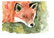 Red fox portrait vector illustration