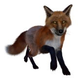 Red fox running- 3D render Royalty Free Stock Photography