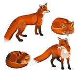 Red fox set royalty free illustration