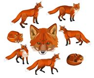 Red fox set stock illustration