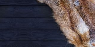 Red fox skin on a black wooden background. Beautiful fur of a red fox.  Royalty Free Stock Photography