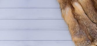 Red fox skin on a gray wooden background. Beautiful fur of a red fox.  Stock Image