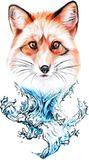 Red fox and water vector illustration