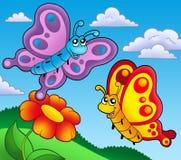 red för fjärilsblommapar Arkivbild