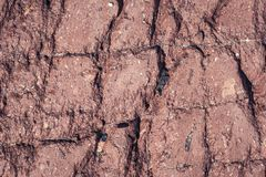 Red fractured stone surface background royalty free stock photo