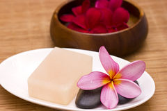 Red frangipani with salt soap Stock Images