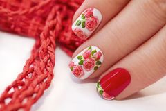 Red French manicure. Red French manicure with design of roses on a white background stock images