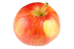 Red fresh apple Stock Photography