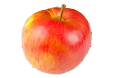 Red fresh apple Royalty Free Stock Photo