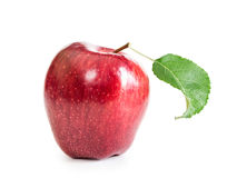 Red fresh apple with leaf Royalty Free Stock Photos