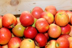 Red fresh apples in a pile on a wooden box.  royalty free stock photography