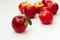 Red fresh apples Royalty Free Stock Photography