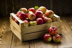 Red fresh apples on a wooden table stock photo