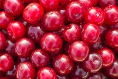 Red fresh cherry Stock Photo