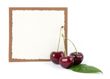 Red fresh cherry with banner Stock Images