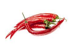 Red fresh chili peppers isolated Stock Image