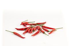 Red fresh chili Royalty Free Stock Photos