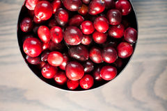 Red fresh cranberries in a bowl Royalty Free Stock Photos