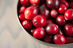 Red fresh cranberries in a bowl Stock Photography