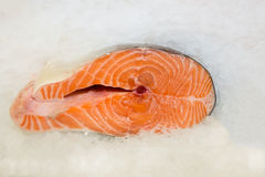 Red fresh fish Stock Images