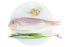 Red fresh fish. One fresh red fish,ginger and some shallot on white plate stock photography