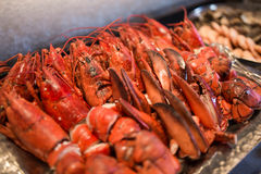 Red fresh lobster crab Royalty Free Stock Photography