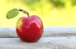 Red, fresh and organic apple Royalty Free Stock Photography