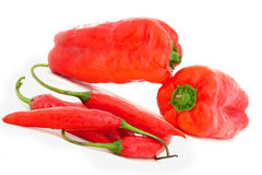Red fresh peppers. Isolated on white Royalty Free Stock Photography