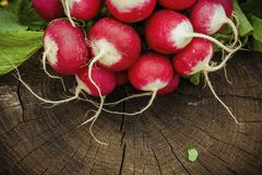 Red fresh radish on wooden surface. Natural healthy food concept Stock Image