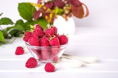 Red fresh raspberries in a glass bowl with green leaves. On white background Royalty Free Stock Photos