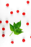 Red fresh raspberries and leaves on white background. Red fresh raspberries on white background. Scattered natural ripe organic berries with green leaf, top view Royalty Free Stock Photo