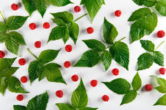 Red fresh raspberries and leaves on white background. Red fresh raspberries on white background. Scattered natural ripe organic berries with green leaves, top Stock Photos