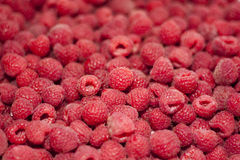 Red fresh raspberries. Rustic style. Tasty, fresh raspberries. Rustic style Royalty Free Stock Photography