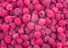 Red fresh raspberry background. For a design Stock Photography