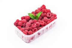 Red fresh raspberry in basket isolated. On white background Royalty Free Stock Photography