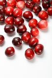 Red cranberry fruit Royalty Free Stock Photos
