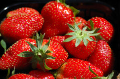 Red fresh ripe garden strawberries Stock Image