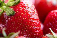 Red  fresh ripe Strawberry Stock Photography