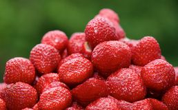 Red fresh strawberries in blurry background, tasty and health food, strawberries, seasonal fruits on spring, red fruits,red berry royalty free stock photo