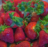 Red, fresh strawberries Stock Photography